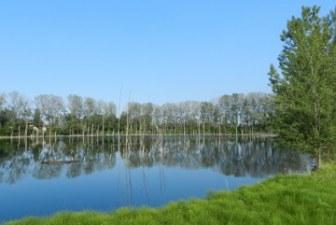 Naturalmente in Bassa Romagna, per scoprire il verde della nostra terra